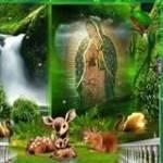 Juana Delgado Profile Picture